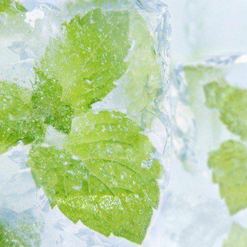 Saborizante concentrado Menthol para e-liquid de flavor apprentice