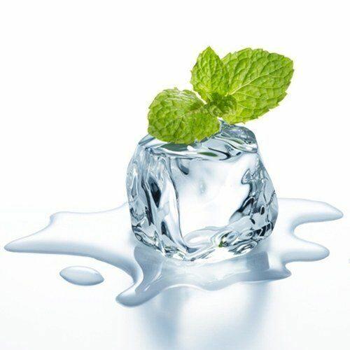 Saborizante concentrado para e-liquid wintergreen gaulteria de flavor apprentice